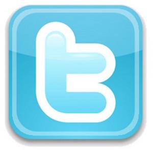 pulsante twitter